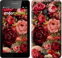 """Чехол на Microsoft Lumia 535 Цветущие розы """"2701u-130"""""""