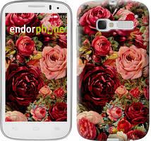 "Чохол на ALCATEL One Touch Pop C5 5036D Квітучі троянди ""2701u-324"""