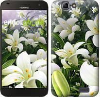 """Чохол на Huawei Ascend G7 Білі лілії """"2686u-147"""""""