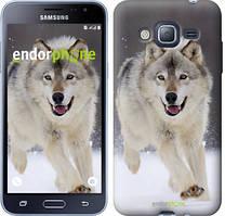 Чехол на Samsung Galaxy J3 Duos (2016) J320H Серый, Бегущий волк
