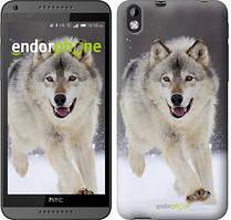 """Чехол на HTC Desire 816 Бегущий волк """"826u-169"""""""