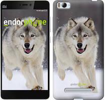 """Чехол на Xiaomi Mi4 Бегущий волк """"826u-163"""""""