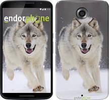 """Чехол на Nokia Lumia 1520 Бегущий волк """"826u-314"""""""