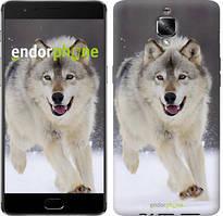 "Чехол на OnePlus 3 Бегущий волк ""826u-334"""