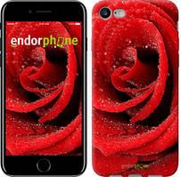 "Чехол на iPhone 7 Красная роза ""529c-336"""