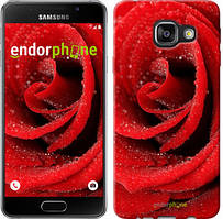 "Чехол на Samsung Galaxy A3 (2016) A310F Красная роза ""529c-159"""