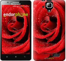 """Чохол на Lenovo A536 Червона троянда """"529c-149"""""""