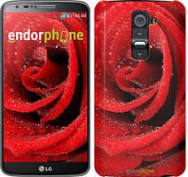 """Чехол на LG G2 Красная роза """"529u-37"""""""