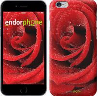"Чехол на Xiaomi Mi4c Красная роза ""529c-178"""