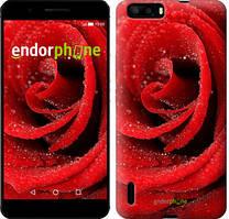 """Чехол на Huawei P9 Красная роза """"529u-347"""""""
