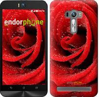 """Чехол на Asus ZenFone Selfie ZD551KL Красная роза """"529u-116"""""""
