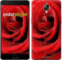 "Чехол на OnePlus 3 Красная роза ""529u-334"""