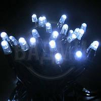 "Аренда LED гирлянды ""Нить LED-PLR-50-5М-240V-W"", 50 св, 5+ м, белый хол."