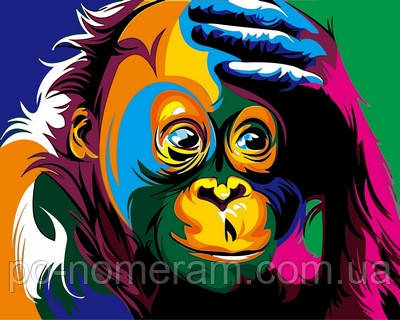 картина по номерам радужная обезьянка