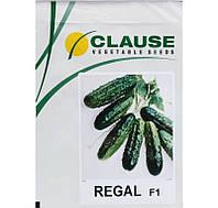 Семена огурца Регал F1 (Clause) 10 г - пчелоопыляемый,  ультра-ранний гибрид (45-48 дней)