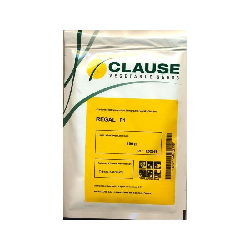 Семена огурца Регал F1 (Clause) 100 г - пчелоопыляемый,  ультра-ранний гибрид (45-48 дней)