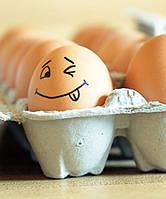 Почему нужно кушать квашенную яйца