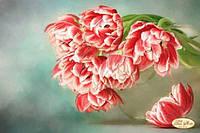 Схема для вышивки бисером Бокэ. Тюльпаны Андорра ТА-287