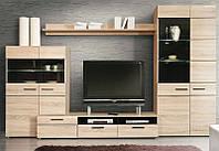 Гостиная мебельной фабрики «ВМВ Холдинг», модель Соло 2