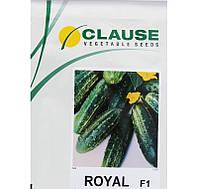 Семена огурца Роял F1 (Clause) 10 г - пчелоопыляемый, ранний гибрид (48-50 дней)