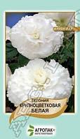 Семена Бегония крупноцветковая,белая 20 семян Агропак