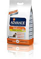 Advance Cat Adult Chicken 15 кг- корм для взрослых котов с курицей