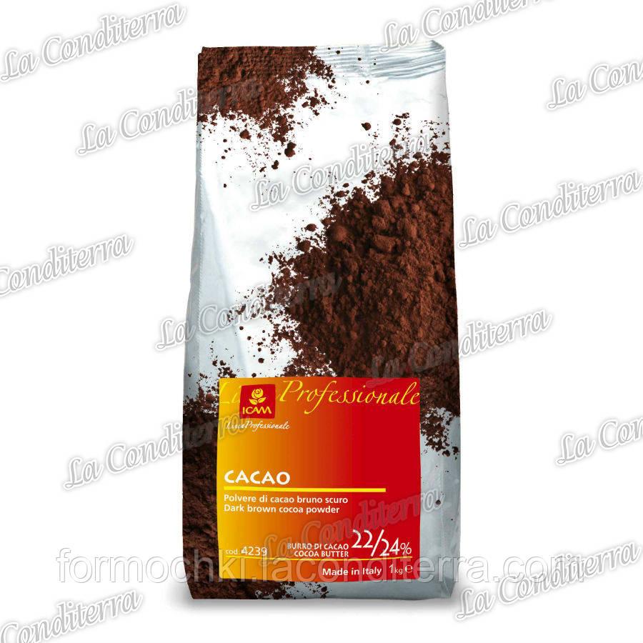 Какао-порошок (22/24% жирности)
