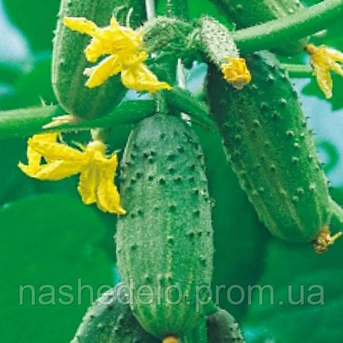 Семена огурца Верные друзья 10 сем. Элитный ряд