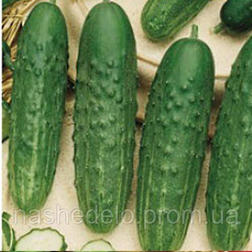 Семена огурца Феникс- 640  25 сем. Элитный ряд