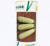 Семена кабачка Асма F1 (Clause) 2500 семян - ранний гибрид, светлый