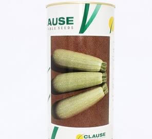 Семена кабачка Асма F1 (Clause) 2500 семян — ранний гибрид, светлый, фото 2