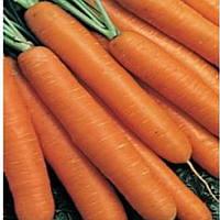 Семена моркови Коралл 15 гр. Элитный Ряд