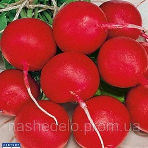Семена редиса Краса 20 гр. Элитный ряд