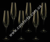 34014-06 PL Harmony, набор бокалов для шампанского без декора (6 шт), высота ~ 25,5 см, объем ~ 200 мл
