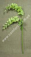 33218-09 Вистерия зеленая, h-93см, цветок искусственный