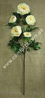 33851-01 Ветка пиона кремового (5 голов), высота ~ 120 см, цветок искусственный
