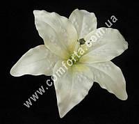 33519-02 Головка лилии бежевая, диаметр - 17 см, цветок искусственный