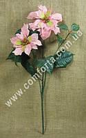 ЦВ0347 пуансетия розов. h-64см