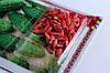 Семена огурец Дружная семейка F1 (инкр) 3г Зеленый (Малахiт Подiлля), фото 5
