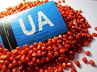Семена кукурузы ранняя ДН Пивиха. ФАО –180