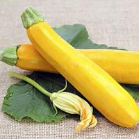 Семена кабачка Мери Голд F1 (Clause) 500 семян - ранний гибрид, золотисто-желтый.