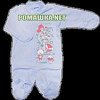 Человечек для новорожденного р. 56 с начесом ткань ФУТЕР 100% хлопок ТМ Виктория 3298 Голубой
