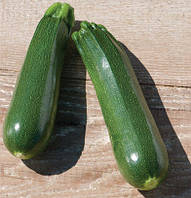 Семена кабачка Тармино F1 (Clause) 500 семян - ранний гибрид, темно-зеленый