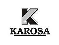 Karosa