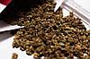 Семена Свекла столовая Цилиндра 3г Бордовая  (Малахiт Подiлля), фото 9