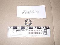 Гайка шлицевая М10х1,25; стандарт ГОСТ 11871-88  трактора, грузовой машины, автобуса, тягача, спецтехники, комбайна, экскаватора, погрузчика