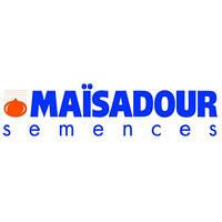 Подсолнечник MAS 85.SU