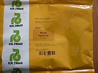 Семена редиса Валери VALERIE F1 25000 сем. калибр 3,0-3,25.