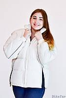 Куртка женская SPORT