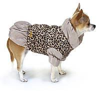 Куртка-батник  Leopard для собачек 25 см Croci C7174556